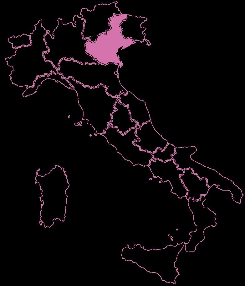 CentriAntiviolenza_Veneto_Dire